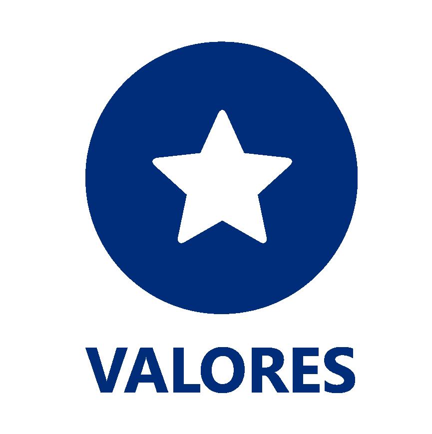 icone-valores